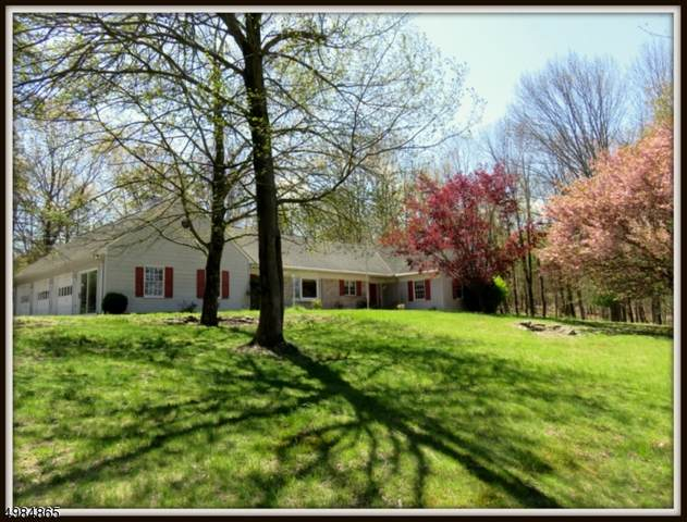 917 Old Schoolhouse Road, Stillwater Twp., NJ 07860 (MLS #3635772) :: Vendrell Home Selling Team