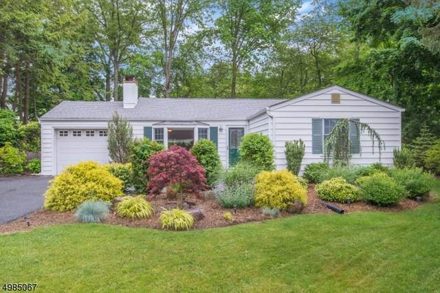 14 Edgewater Dr, Denville Twp., NJ 07834 (MLS #3635944) :: Pina Nazario