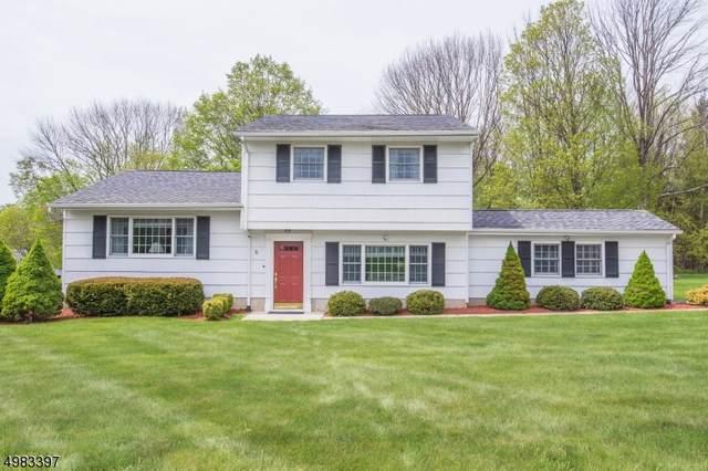 8 Rose Ct, Roxbury Twp., NJ 07836 (MLS #3636128) :: Coldwell Banker Residential Brokerage