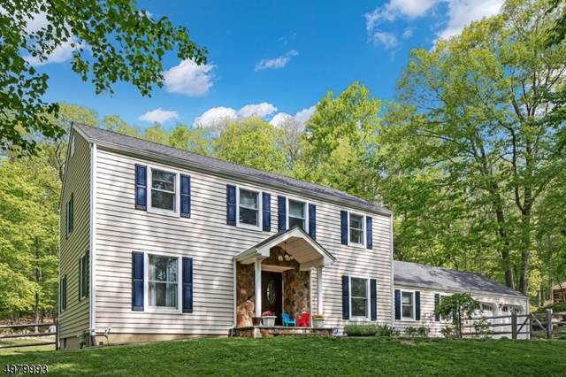 18 Big Spring Rd, Tewksbury Twp., NJ 07830 (MLS #3636134) :: Weichert Realtors