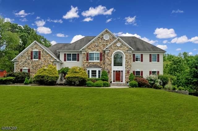 4 Hunter Ln, Alexandria Twp., NJ 08848 (MLS #3637155) :: SR Real Estate Group