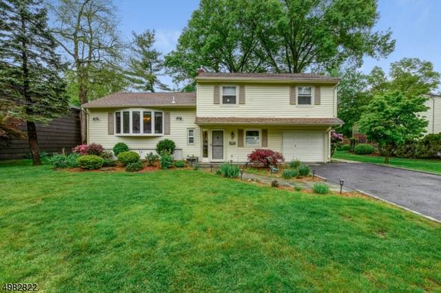 35 Havenwood Dr, Livingston Twp., NJ 07039 (MLS #3637241) :: Mary K. Sheeran Team