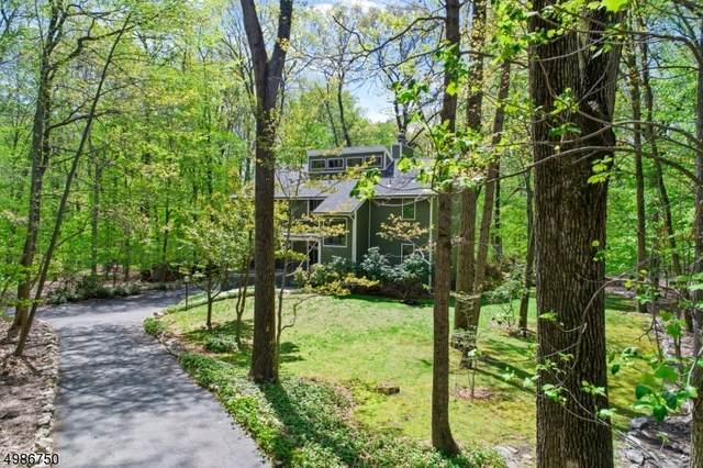 6 Martens Road, Tewksbury Twp., NJ 08833 (#3638031) :: Jason Freeby Group at Keller Williams Real Estate