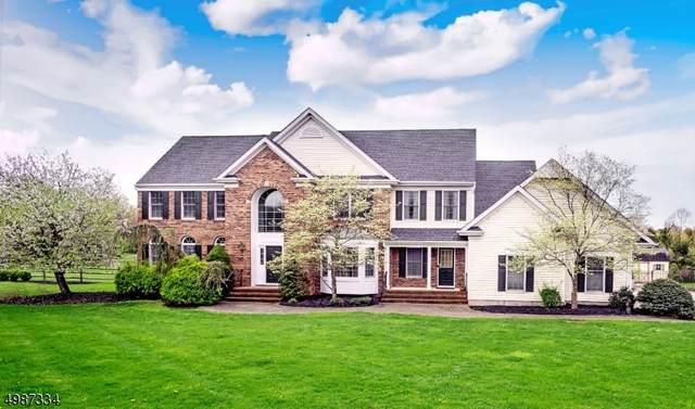 3 Delaware Rd, Readington Twp., NJ 08889 (#3638036) :: Jason Freeby Group at Keller Williams Real Estate