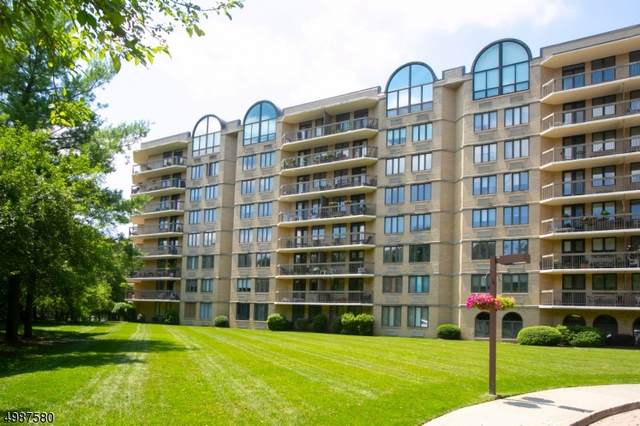 10 Smith Manor Blvd #105, West Orange Twp., NJ 07052 (MLS #3638255) :: Mary K. Sheeran Team