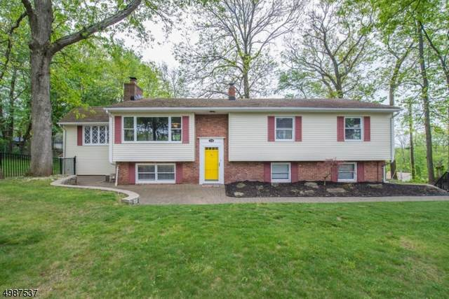 714 Reba Rd, Mount Arlington Boro, NJ 07850 (MLS #3638282) :: Mary K. Sheeran Team