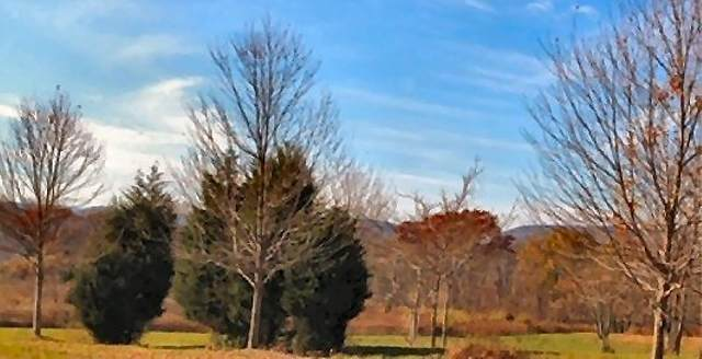 18 Meadow Ridge Rd, Knowlton Twp., NJ 07832 (MLS #3638589) :: Mary K. Sheeran Team