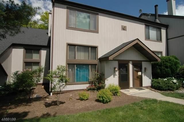 696 Audubon Court #96, Stanhope Boro, NJ 07874 (MLS #3639752) :: The Sue Adler Team