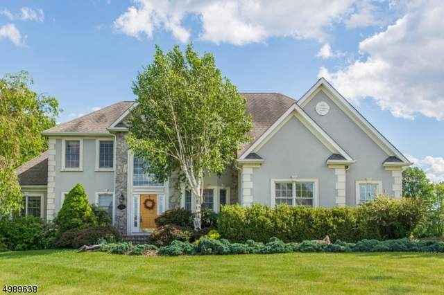 15 Skyview Dr, Sparta Twp., NJ 07871 (MLS #3640030) :: The Sikora Group
