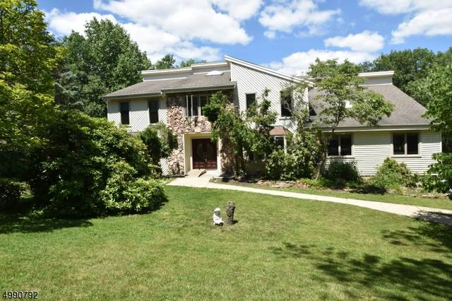 45 Copeland Rd, Denville Twp., NJ 07834 (MLS #3641073) :: Pina Nazario
