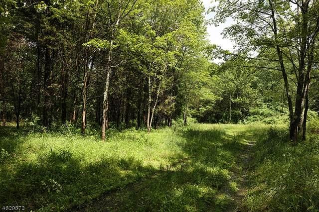 55 Upper Creek Rd, Delaware Twp., NJ 08559 (MLS #3641349) :: Weichert Realtors