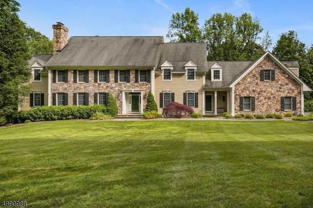 197 Pottersville Rd, Chester Twp., NJ 07930 (MLS #3641566) :: Team Francesco/Christie's International Real Estate