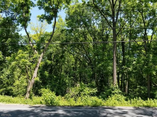 80 Route 519, Pohatcong Twp., NJ 08865 (MLS #3641599) :: Coldwell Banker Residential Brokerage