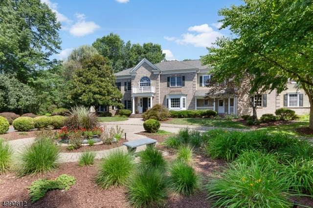 15 Pleasant Plains Rd, Harding Twp., NJ 07976 (MLS #3641696) :: SR Real Estate Group