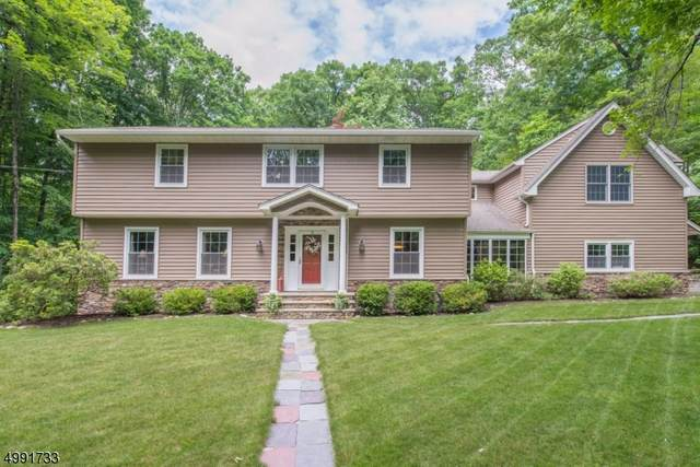 525 Pepperidge Tree Ln, Kinnelon Boro, NJ 07405 (MLS #3641863) :: The Dekanski Home Selling Team