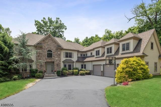 14 Thomas Ct, Green Brook Twp., NJ 08812 (MLS #3643207) :: Team Francesco/Christie's International Real Estate