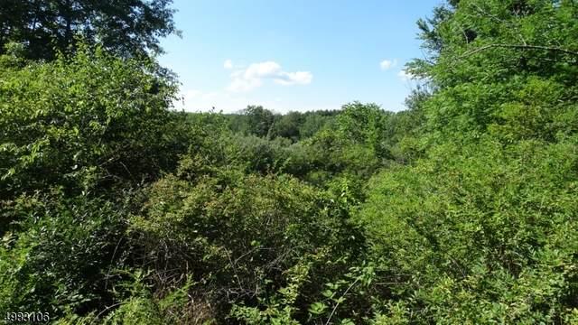 0 Red Mill Road, Lebanon Twp., NJ 08826 (MLS #3643477) :: SR Real Estate Group