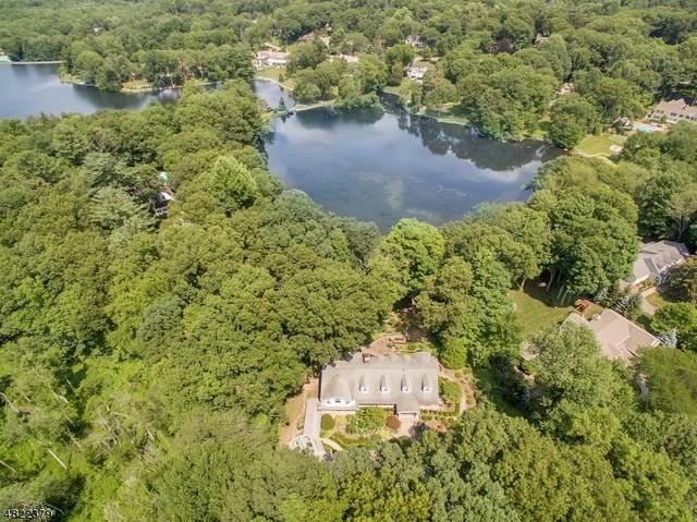 935 Old Mill Rd, Franklin Lakes Boro, NJ 07417 (MLS #3643578) :: Team Braconi | Christie's International Real Estate | Northern New Jersey