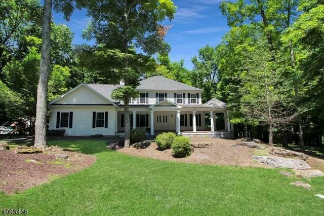 12 Eagles Nest Rd, Green Twp., NJ 07860 (MLS #3643582) :: Mary K. Sheeran Team