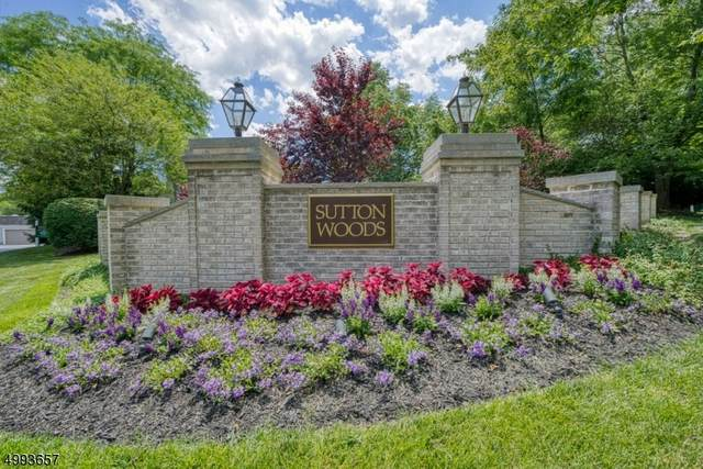 169 Riveredge Dr #169, Chatham Twp., NJ 07928 (MLS #3643837) :: Pina Nazario