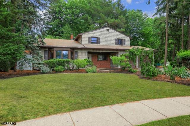 12 Old Hickory Ln, Edison Twp., NJ 08820 (MLS #3644069) :: The Sue Adler Team