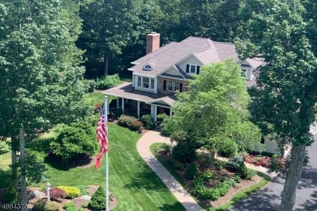 1 Boulder Ct, Boonton Twp., NJ 07005 (MLS #3644233) :: SR Real Estate Group