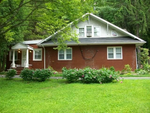 161 Route 46, Washington Twp., NJ 07840 (MLS #3644452) :: SR Real Estate Group