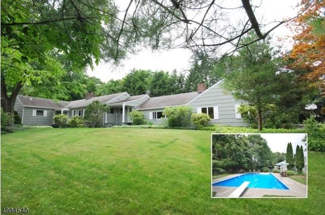 24 Woodland Road, Franklin Boro, NJ 07416 (MLS #3644524) :: SR Real Estate Group