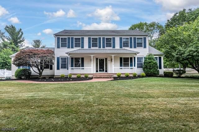 4 Kingswood Ct, Montgomery Twp., NJ 08502 (MLS #3644614) :: William Raveis Baer & McIntosh