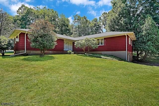 18 Lamington Rd, Readington Twp., NJ 08889 (#3644912) :: NJJoe Group at Keller Williams Park Views Realty