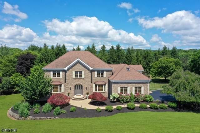 10 Hyde Rd, Readington Twp., NJ 08822 (MLS #3645411) :: The Dekanski Home Selling Team