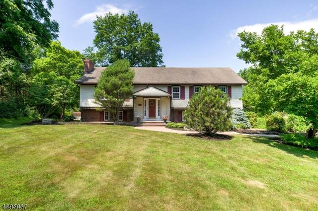 631 Meadow Rd, Bridgewater Twp., NJ 08807 (MLS #3645711) :: Pina Nazario