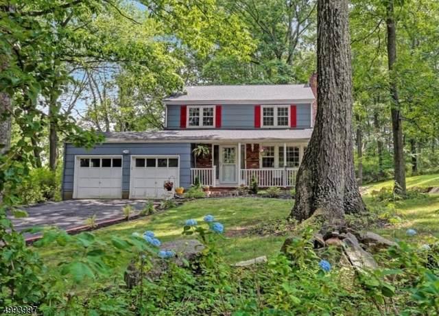 1 Orchard Lane, Chester Boro, NJ 07930 (MLS #3645842) :: Team Francesco/Christie's International Real Estate