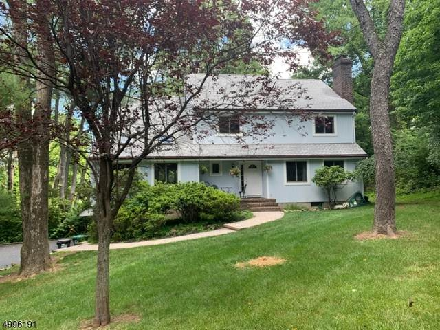 9 Deer Hill Rd, Union Twp., NJ 08802 (MLS #3645856) :: Coldwell Banker Residential Brokerage