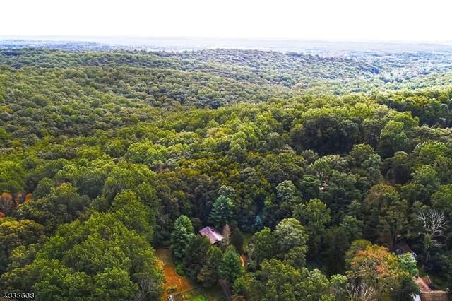 179 Jockey Hollow Rd, Bernardsville Boro, NJ 07924 (MLS #3645985) :: The Sikora Group