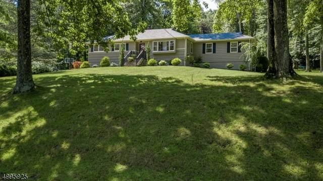 123 Lupine Way, Long Hill Twp., NJ 07980 (MLS #3646085) :: Coldwell Banker Residential Brokerage