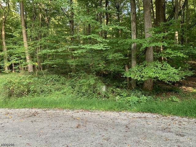 645 W Mountain, Sparta Twp., NJ 07871 (MLS #3646179) :: Coldwell Banker Residential Brokerage