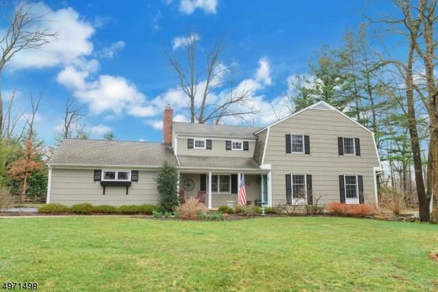 30 Diann Dr, Montville Twp., NJ 07045 (MLS #3646893) :: Coldwell Banker Residential Brokerage