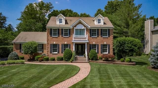 22 Francine Pl, Long Hill Twp., NJ 07946 (#3648101) :: Bergen County Properties