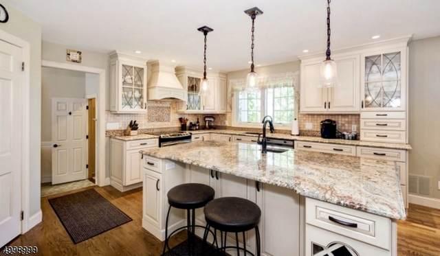 32 Spring Hill Rd, Franklin Twp., NJ 08801 (MLS #3648368) :: SR Real Estate Group