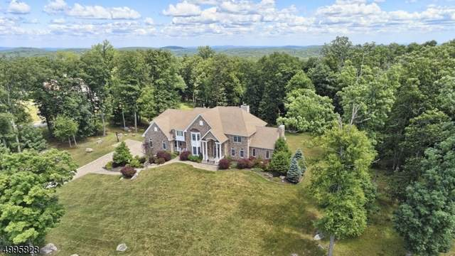 9 Felkay Ct, Kinnelon Boro, NJ 07405 (MLS #3648740) :: REMAX Platinum