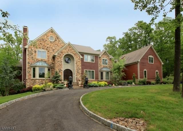 2 Kelsey Farm Rd, Alexandria Twp., NJ 08848 (MLS #3649513) :: Mary K. Sheeran Team