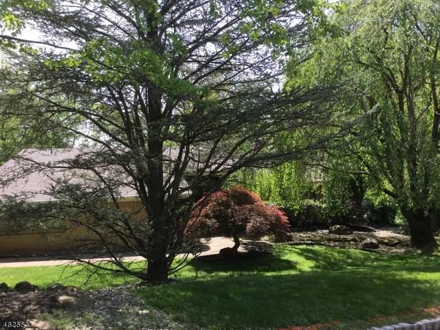 1019 Sunny Slope Dr, Mountainside Boro, NJ 07092 (MLS #3649722) :: The Dekanski Home Selling Team