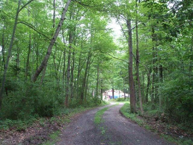 601 Fox Farm Rd, Bethlehem Twp., NJ 08802 (#3651183) :: NJJoe Group at Keller Williams Park Views Realty