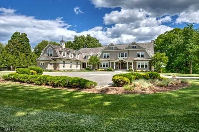 20 Horseshoe Bend Rd, Mendham Boro, NJ 07945 (MLS #3651914) :: The Douglas Tucker Real Estate Team