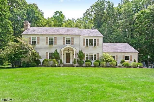 119 State Park Rd, Chester Twp., NJ 07930 (MLS #3652129) :: The Douglas Tucker Real Estate Team