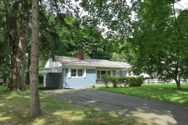 3 Pine St, Green Brook Twp., NJ 08812 (MLS #3652419) :: REMAX Platinum