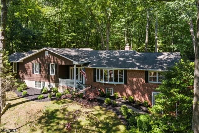 38 Cora Ln, Chester Twp., NJ 07930 (MLS #3652731) :: The Douglas Tucker Real Estate Team