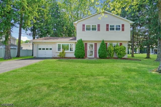3 Corvair Ct, Mount Olive Twp., NJ 07836 (#3652753) :: Daunno Realty Services, LLC