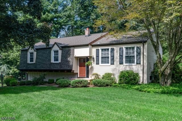 28 Forest Drive, Roxbury Twp., NJ 07876 (MLS #3652770) :: REMAX Platinum